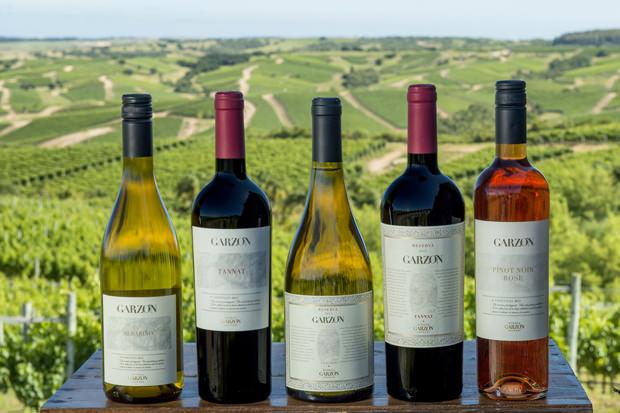 Vinos Bodega Garzón