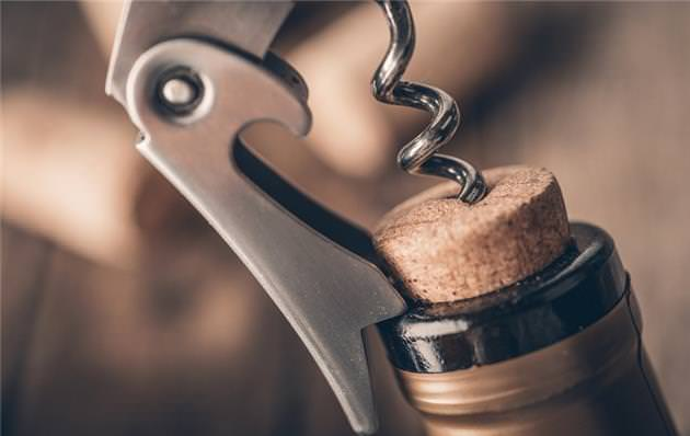 portada conservar vinos