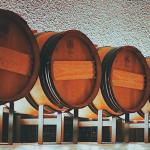 fermentacion-alcoholica