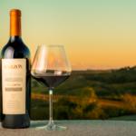 Exportación de vinos