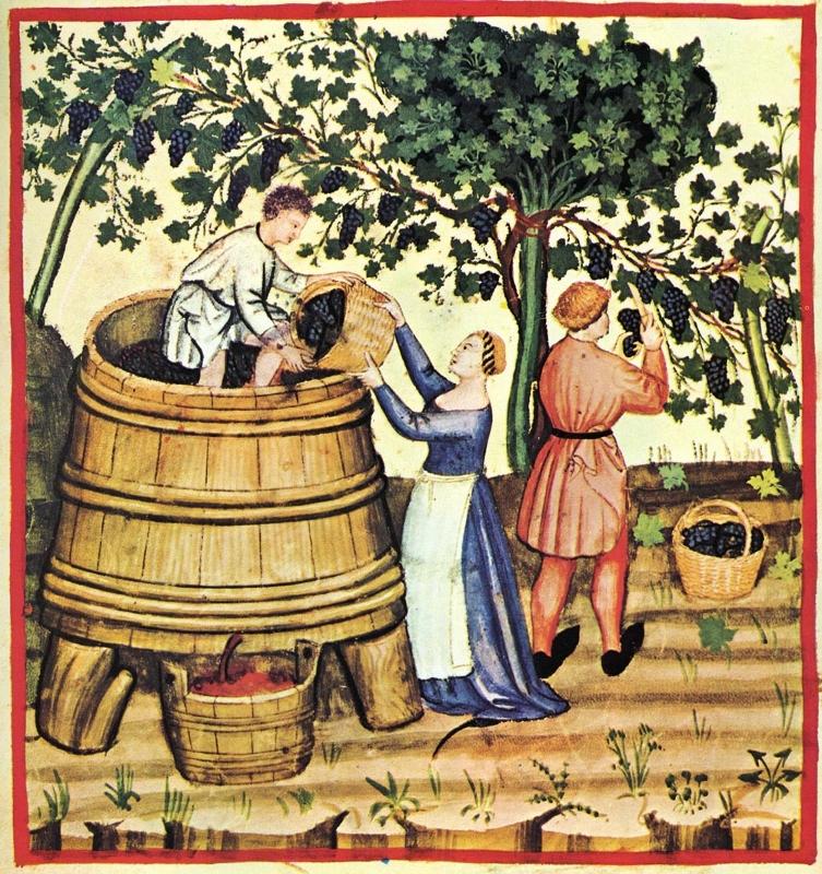 componentes del vino
