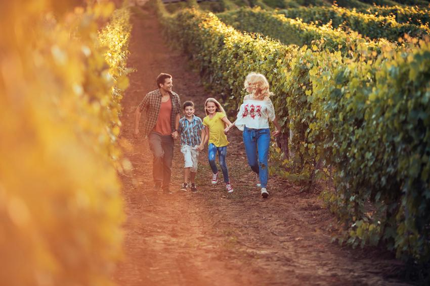 Familia entre viñedos