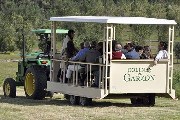 Vive nuestras experiencias Garzón