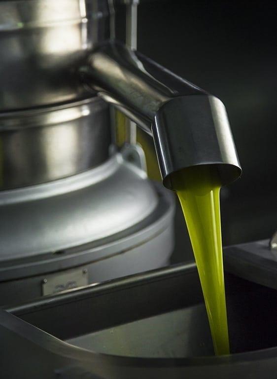 Conozca nuestra planta boutique de elaboración de aceite de oliva extra virgen Colinas de Garzón