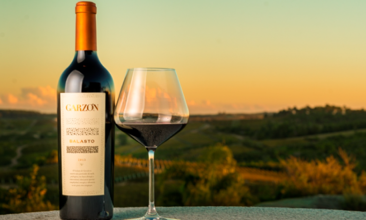 Exportación de vinos en Uruguay: datos, visión global y futuro