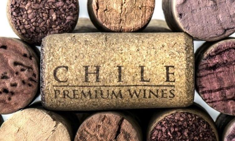 Vinos del mundo: Chile