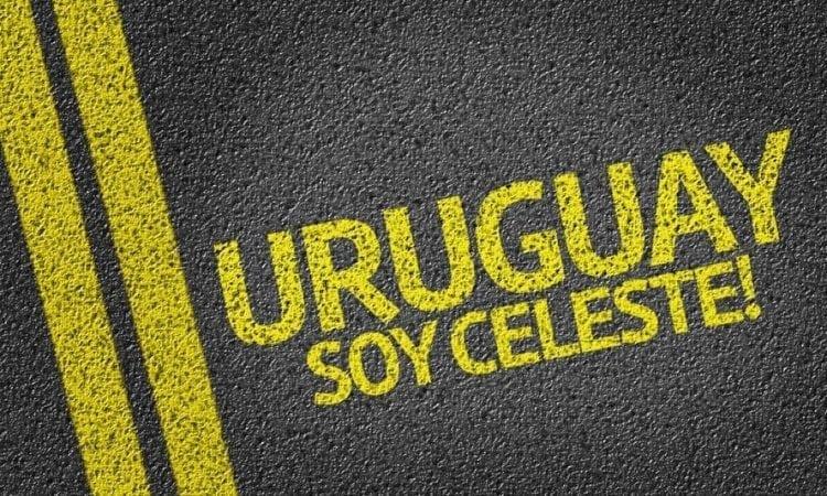 Uruguay: la historia del vino en el país