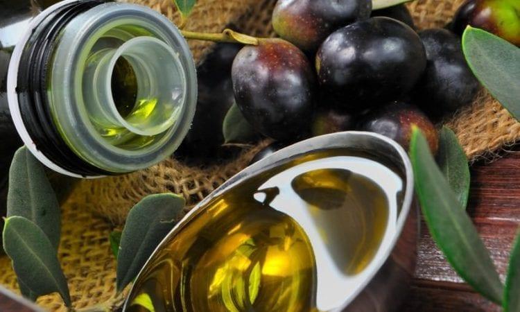 Guía para la conservación del aceite de oliva