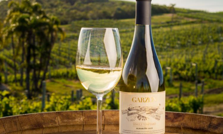 Enfriador de vinos: ideas para hacerlo en casa