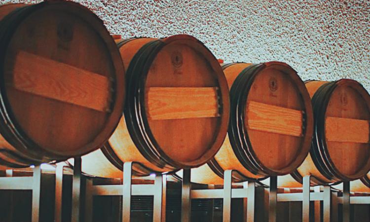 Fermentación alcohólica: qué es y cómo afecta al vino