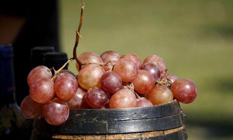 Maduración del vino: los factores que intervienen en el proceso