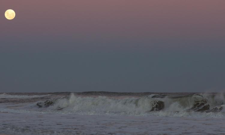 Playas de Punta del Este: fotografías de sus rincones más bellos