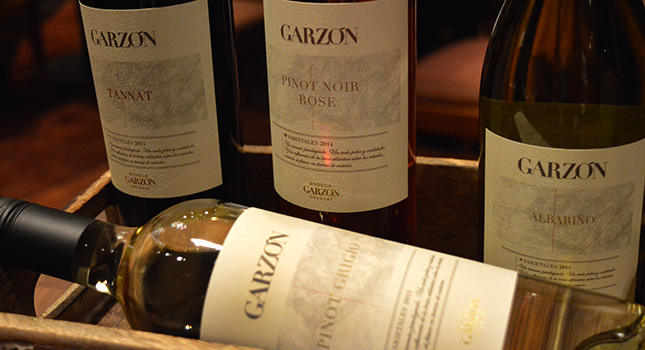 Wine labels: learn to read them with Bodega Garzón