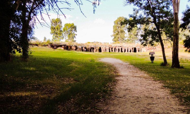 Las mejores opciones para hacer turismo natural en otoño