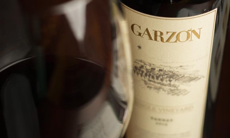 Variedades de vino tinto: la guía definitiva