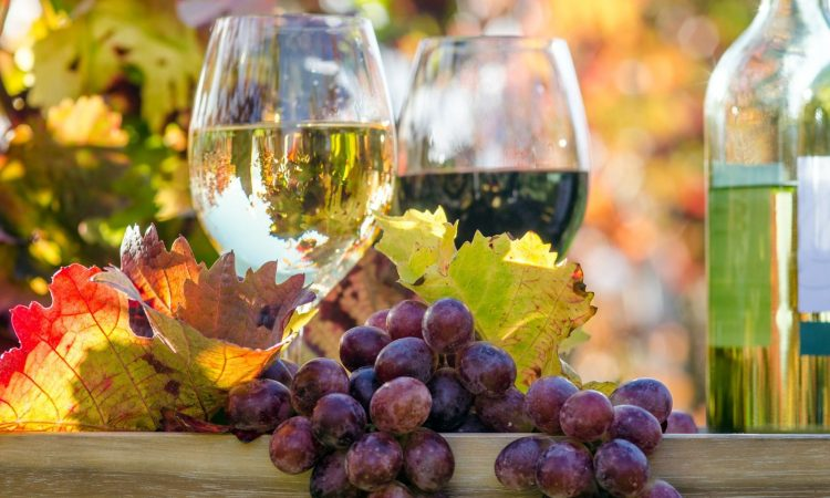 Wine with fruit: some of the best wine and fruit parings