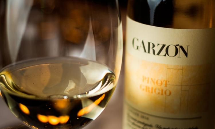 Vinos frescos. Una selección de vinos ideales para disfrutar este verano