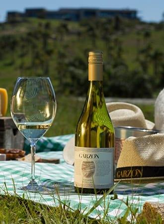 Disfrute de un almuerzo en los viñedos
