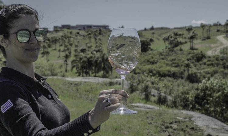 Características Pinot Noir Rosé